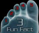 Fun Fact 3;