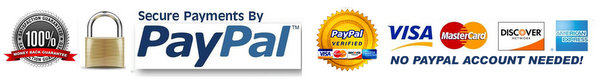 Guaranteed Secure Paypal Payment